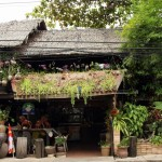 Pittoreska Natural Restaurant i Phuket